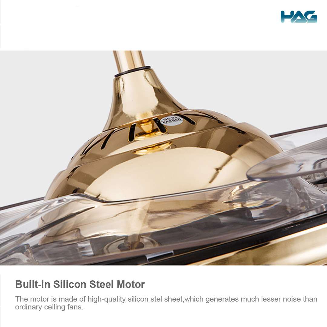 HAG Invisible Blade Ceiling Fan 6069 (Classic Gold) Motor details